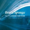 Brain Sponge - Where They Were
