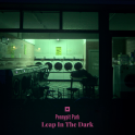 Pennypit Park - Leap In The Dark